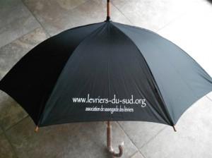 parapluizs
