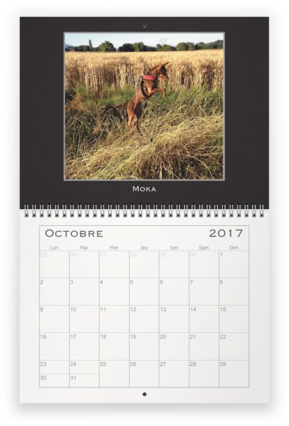octobre-pod
