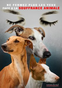 Ne_fermez_plus_les_yeux(1)